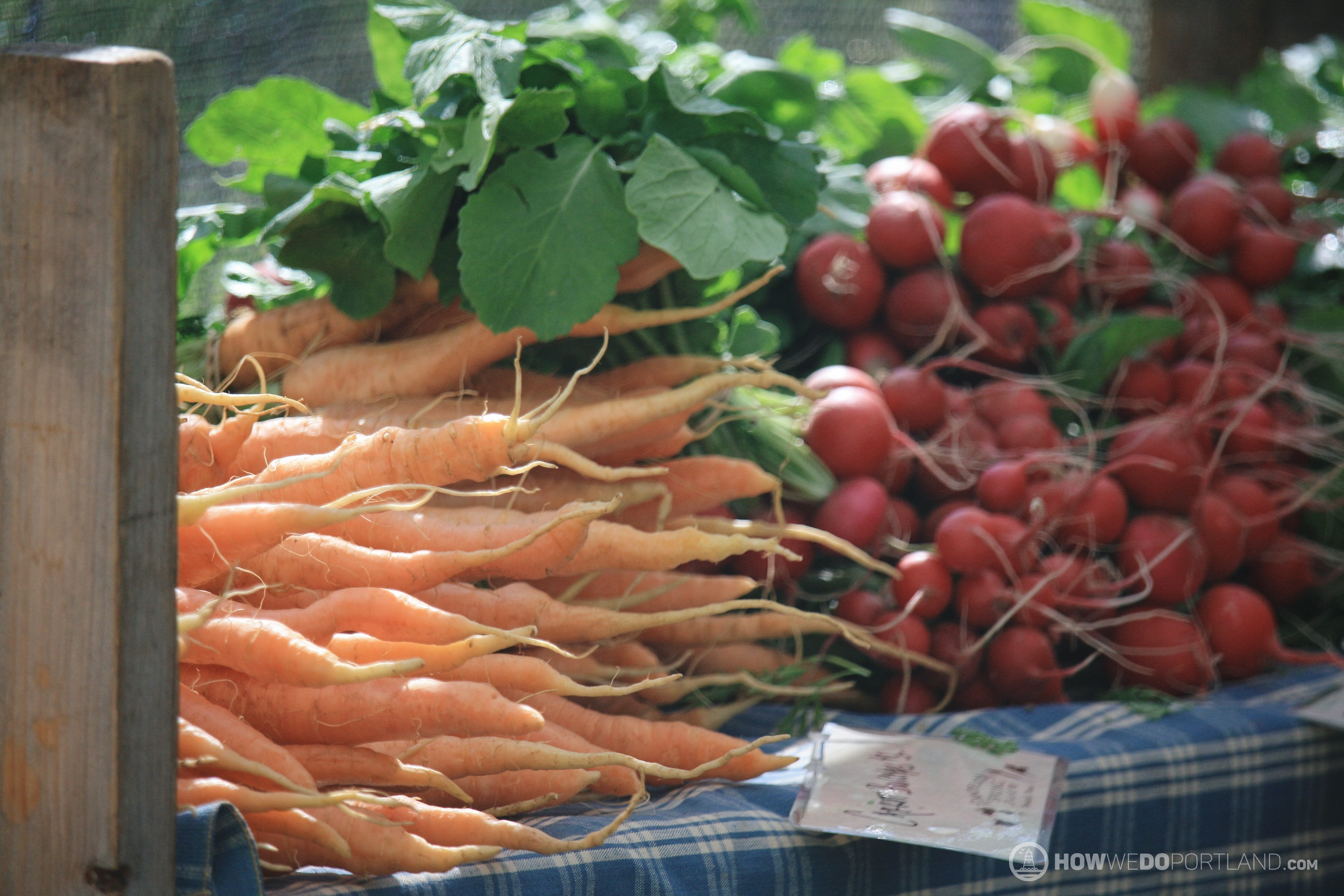 Carrots & Radishes from Dandelion Spring Farm