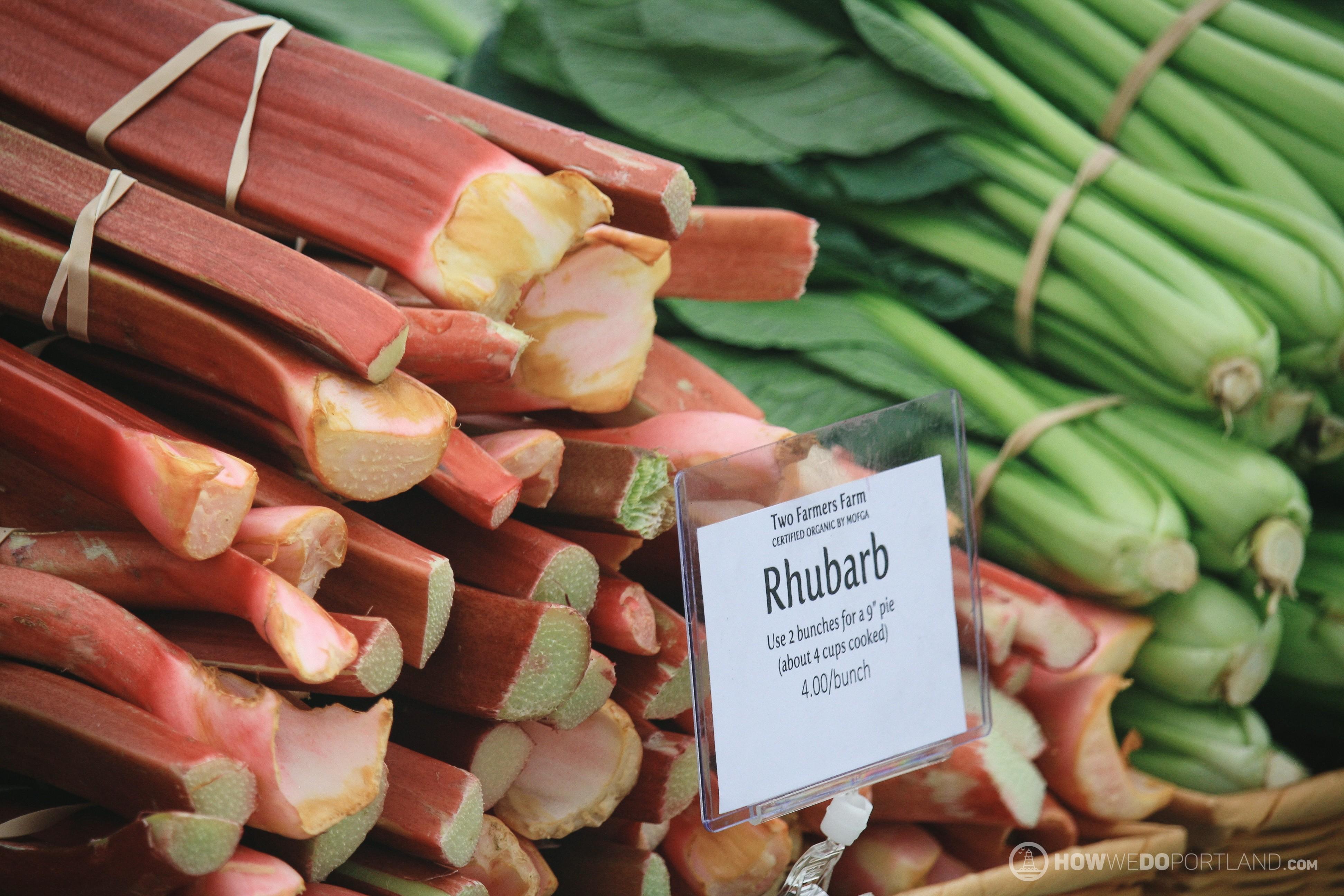 Fresh Rhubarb from Two Farmers Farm