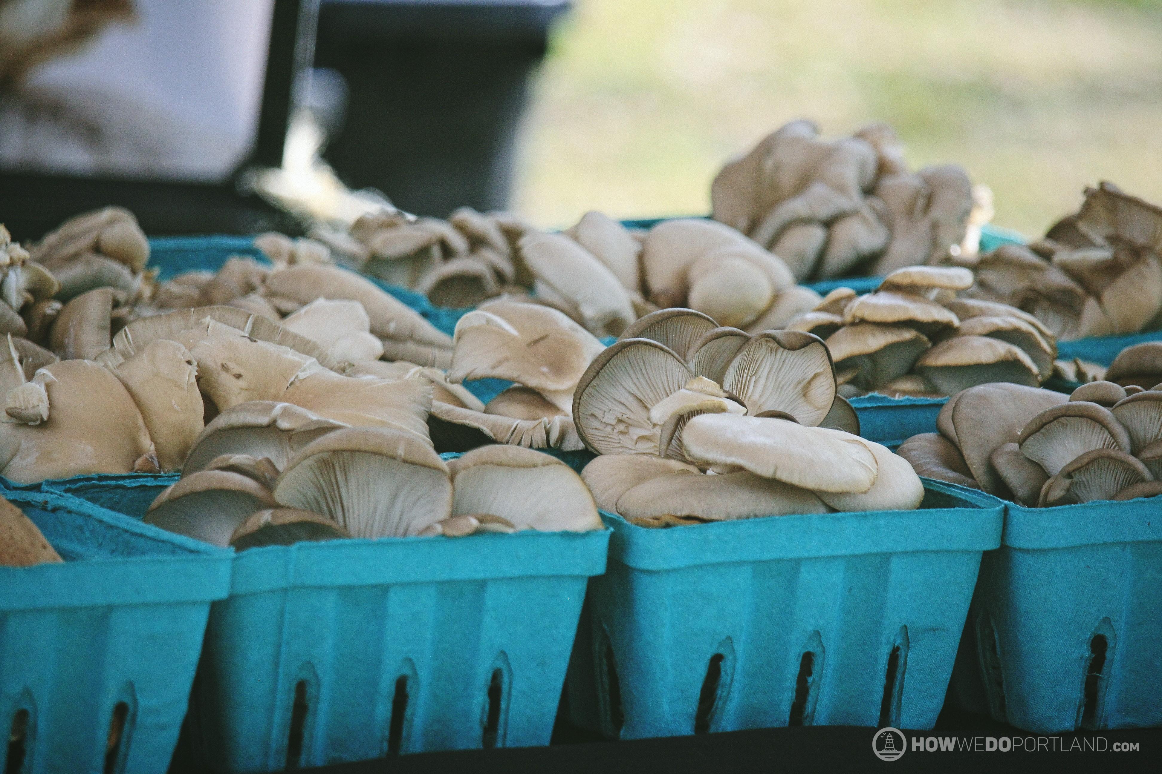 Local Mushrooms