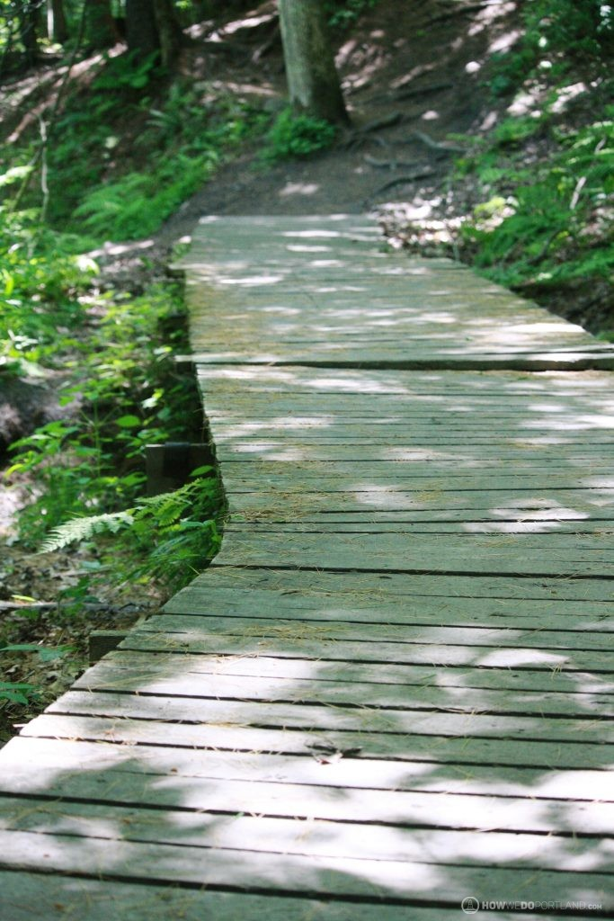 Presumscot River Trail: Bridges take you over wet / muddy areas