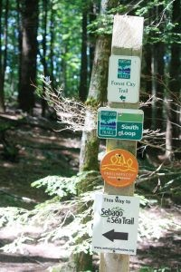 Forest City Trail Signs