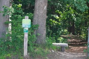 Presumscot River Preserve: Oak Nut Trail Head