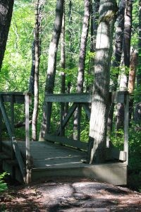 Stroudwater Trail: Sturdy Bridges Help Cross Streams
